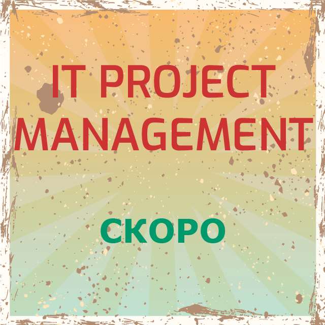 IT Project Management